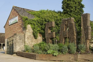 England - Oxford: FAI Farm