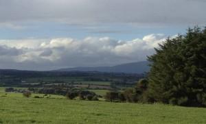 Flagship Farms