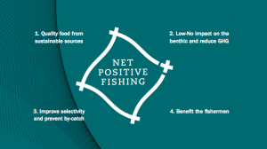 Report Calls For Investment In New Fishing Net Technology - See more at: http://simonl24.sg-host.com/?post_type=portfolio&p=2845&preview=true#sthash.T6L7aXx6.dpuf