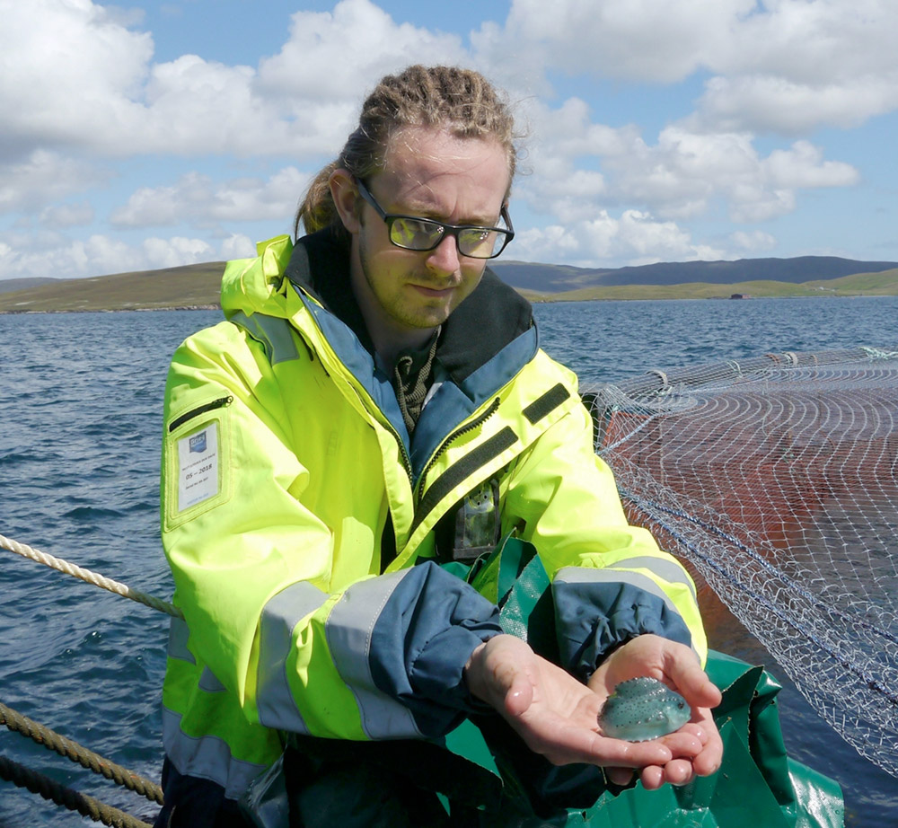 Greig Seafood Shetland have reduced lice levels by 70 per cent within eight weeks.