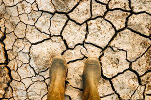 Mass mobilisation, coronavirus & climate change