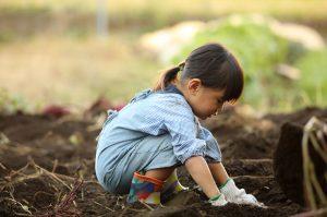 Regen agriculture for kids
