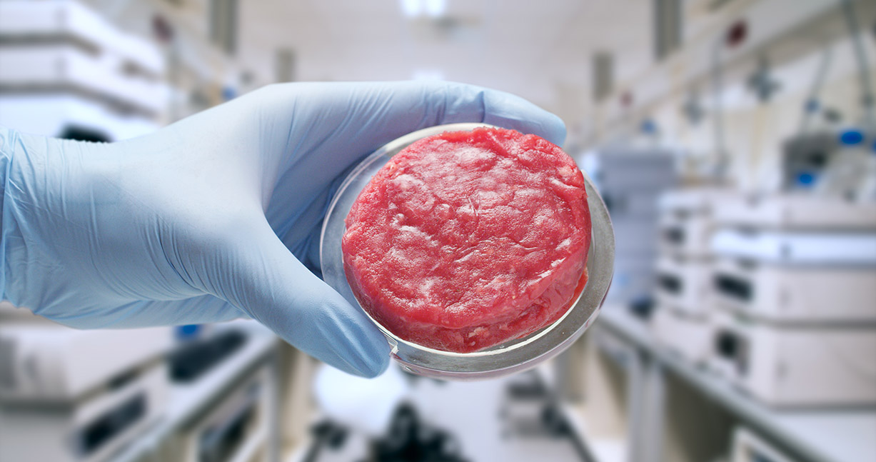 Artificial meat sample