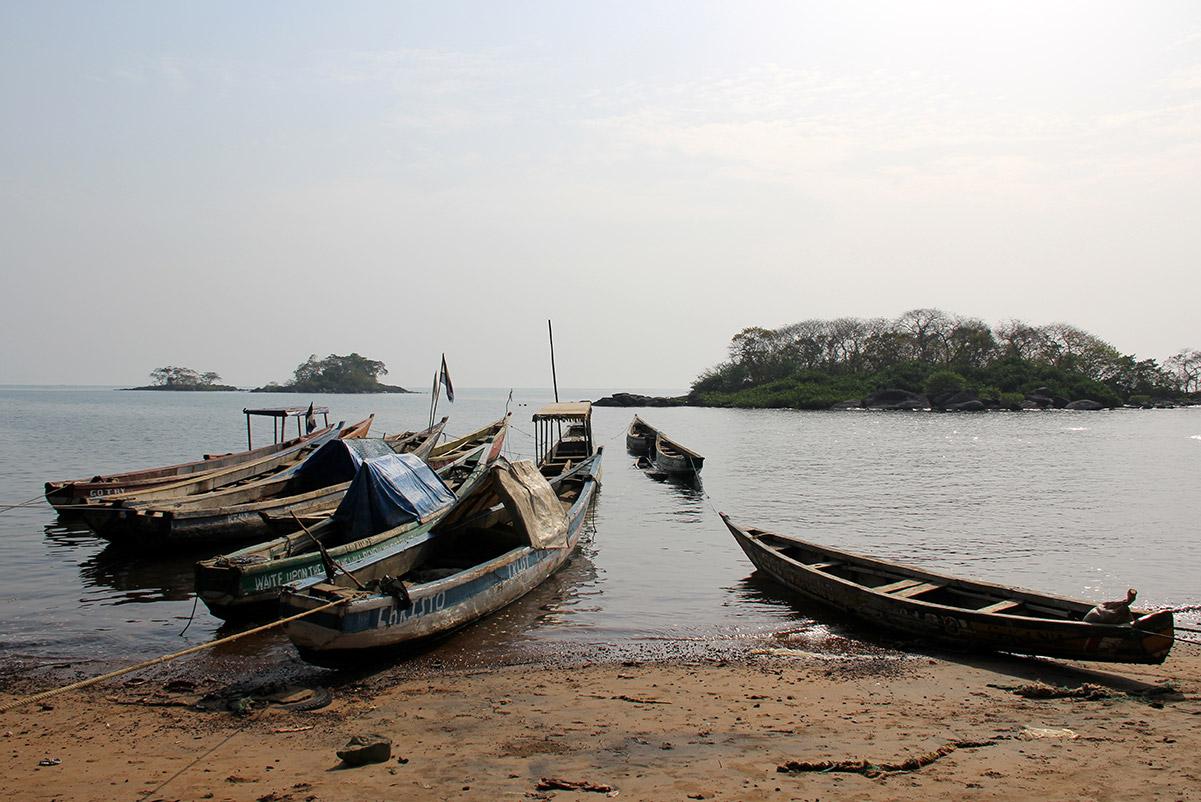 Banana Island, Sierra Leone - FAI Farms