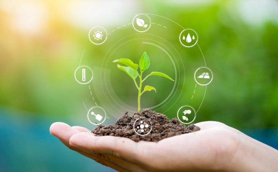 Arla's Regenerative Farming Pilot Programme
